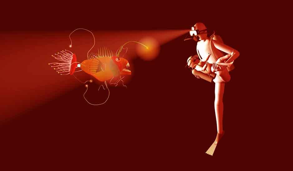 Inhabitations - Phantasms of the Body in Contemporary Art