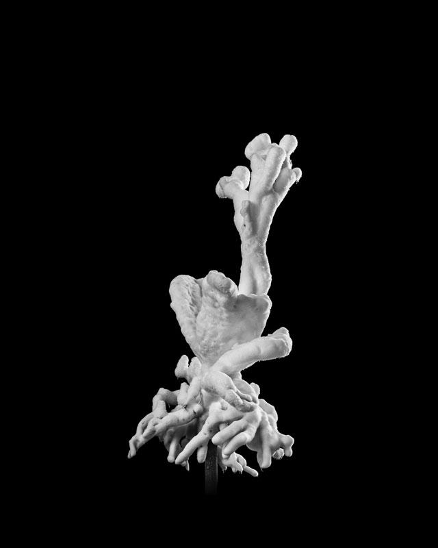 Opening:Under 30 XI - Young Swiss Art – Kiefer Hablitzel Prize 2015