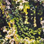 Ursula Steinacher: Wald, 2014, Öl auf Baumwolle, 140 × 180 cm