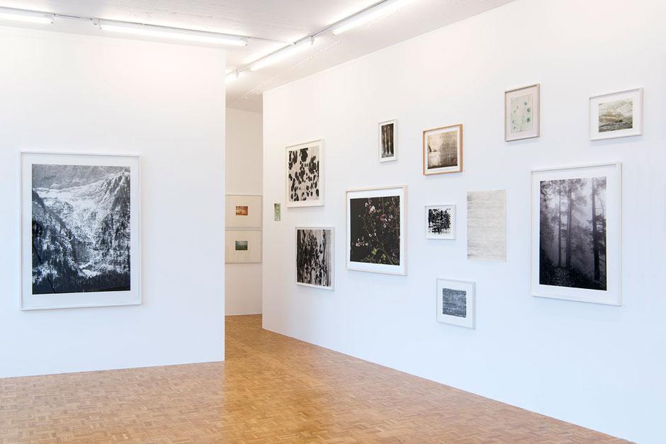Art Event: Cécile Wick