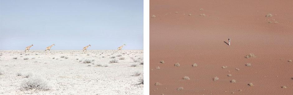 Maroesjka Lavigne - Land of Nothingness