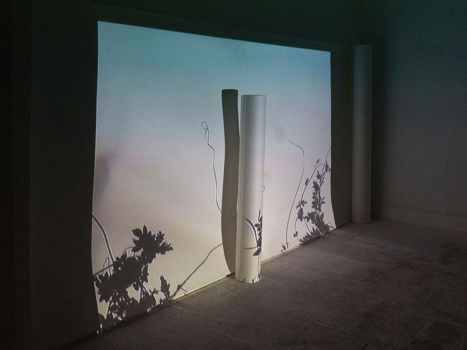 Guided tour: AUSWAHL 18 - Aargau Artists / Guest: Simone Holliger