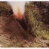 Ana Mendieta and Carolee Schneemann - Irrigation Veins - Selected Works 1966 – 1983