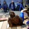 Performance: Nicola Genovese: S.H.T.F. – die Trilogie (2018–2020) mit Gastperformerin Magda Drozd