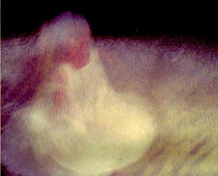 unbenannt-scannen-14