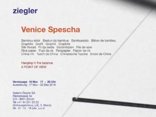 Ausstellung Venice Spescha_Galerie Ziegler Zürich