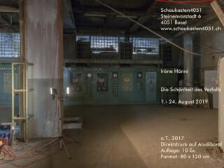 haenni-irene_schaukasten4051_2019_klein